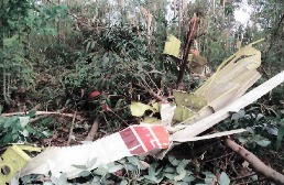 Debris of the crashed Piper PA-31 in Colombia (Photo: baaa-acro.com)